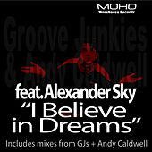 I Believe In Dreams by Groove Junkies