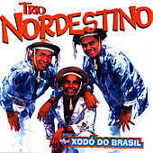 Xodó Do Brasil by Trio Nordestino