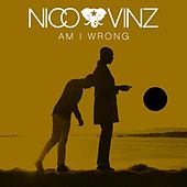 Am I Wrong by Nico & Vinz