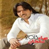 Bahaa Sultan 2013 by Bahaa Sultan