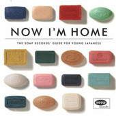 Now I'm Home - The Soap Records Guide von Various Artists