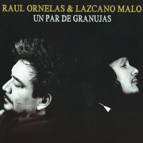 Un Par de Granujas by Raúl Ornelas