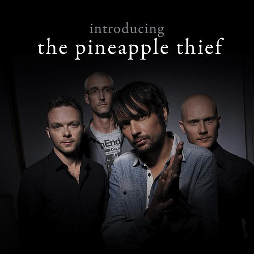 Introducing... The Pineapple Thief by The Pineapple Thief