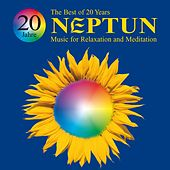 20 Years: The Best of Neptun by Various Artists