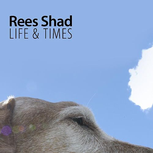 Life & Times by The Rees Shad Band