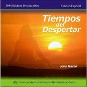 Tiempos del Despertar by John Martin