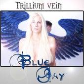 Blue Jay by Trillium Vein