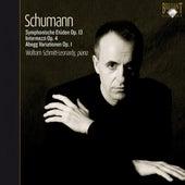 Schumann: Piano Works by Wolfram Schmitt-Leonardy