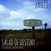 Salad of Destiny by Kriece