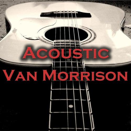 Acoustic Van Morrison by Wildlife