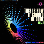 This Is How It Should Be Done, Vol. 2 by Various Artists