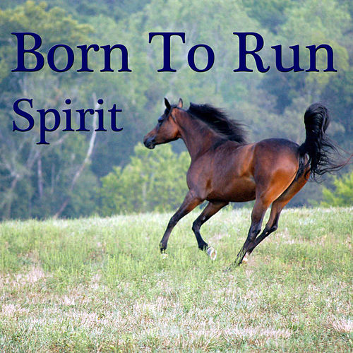 Born To Run by Spirit