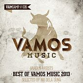 Best of Vamos Music 2013 - Selected by Rio Dela Duna by Various Artists