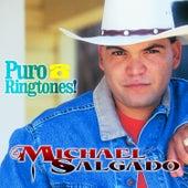 El Dia Que Te Fuiste by Michael Salgado