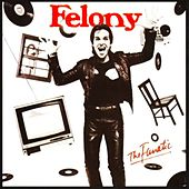 The Fanatic by Felony