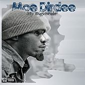 My Digiscale by Moe Dirdee