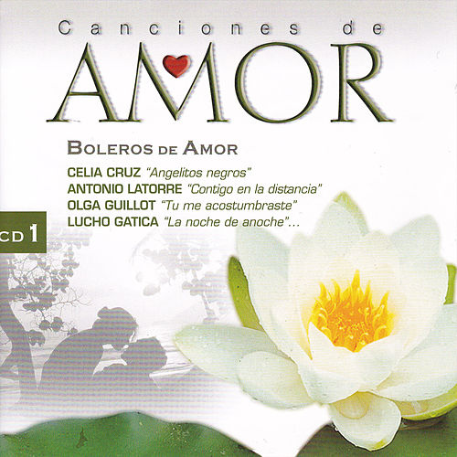 Canciones de Amor: Boleros de Amor 1 by Various Artists
