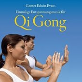 Qi Gong - Einmalige Entspannungsmusik by Gomer Edwin Evans