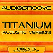 Titanium (Acoustic Version) by Audio Groove