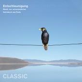 Entschleunigung - Musik von unermesslicher Schönheit und Ruhe von Various Artists