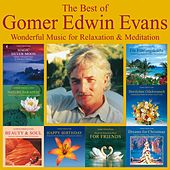 The Best Of Gomer Edwin Evans: Fantastic Instrumental Music by Gomer Edwin Evans