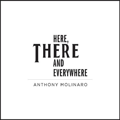 Here, There and Everywhere by Anthony Molinaro