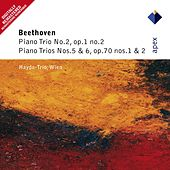 Beethoven : Piano Trios Nos 2, 5 & 6 by Haydn Trio Wien