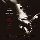 The Day Before Wine And Roses by The Dream Syndicate