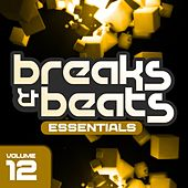 Breaks & Beats Essentials Vol. 12 - EP by Various Artists