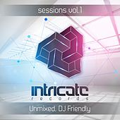 Intricate Sessions, Vol. 1 (Unmixed & DJ Friendly) by Various Artists