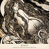 Forgiving the Cleansing Meteor by Junius