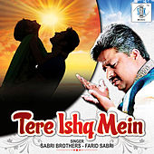 Tere Ishq Mein - Single by Sabri Brothers