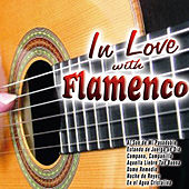 In Love with Flamenco by Various Artists