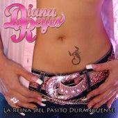 La Reina del Pasito Duranguense by Diana Reyes