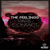 Rare Contact by The Feelings