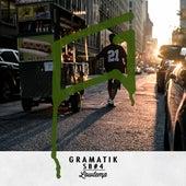 Sb4 by Gramatik