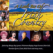 A Little Bit Of Irish Country by Various Artists
