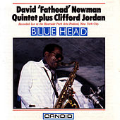 Blue Head by David 'Fathead' Newman