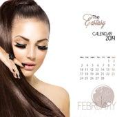 The Ecstasy Calendar 2014: February (Acid Jazz) by Various Artists