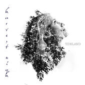 Harvest Nigh - EP by Tideland