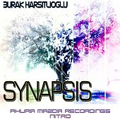 Synapsis by Burak Harsitlioglu