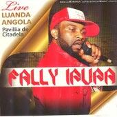 Luanda Angola (Live) by Fally Ipupa