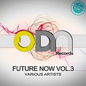 Future Now Vol 3 by Various Artists