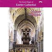 The Grand Organ of Exeter Cathedral by Andrew Millington