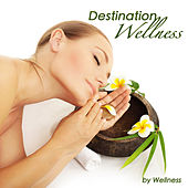 Destination Wellness: Calming, Relaxing and Sleeping Music, New Age Soundscapes by Wellness Guru