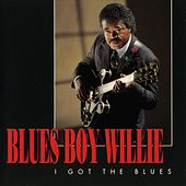 I Got The Blues by Blues Boy Willie