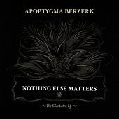 Nothing Else Matters by Apoptygma Berzerk