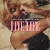 Life Life by Stonebridge
