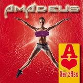 Herz Ass by Amadeus