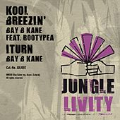 Kool Breezin' (feat. Rootypea) - Single by Bay B Kane